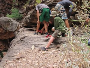 Trip members work together to evacuate a victim out of Upper Elves Chasm.  The rescue took more than two hours and involved moving an incapacitated victim down steep, rocky terrain and under rocky shelves like the one in the photo.  A paco pad and rope were essential to this rescue.